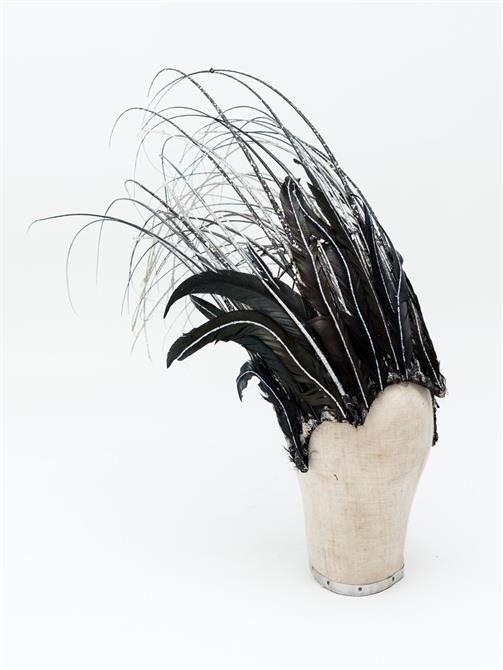 A feathered headdress