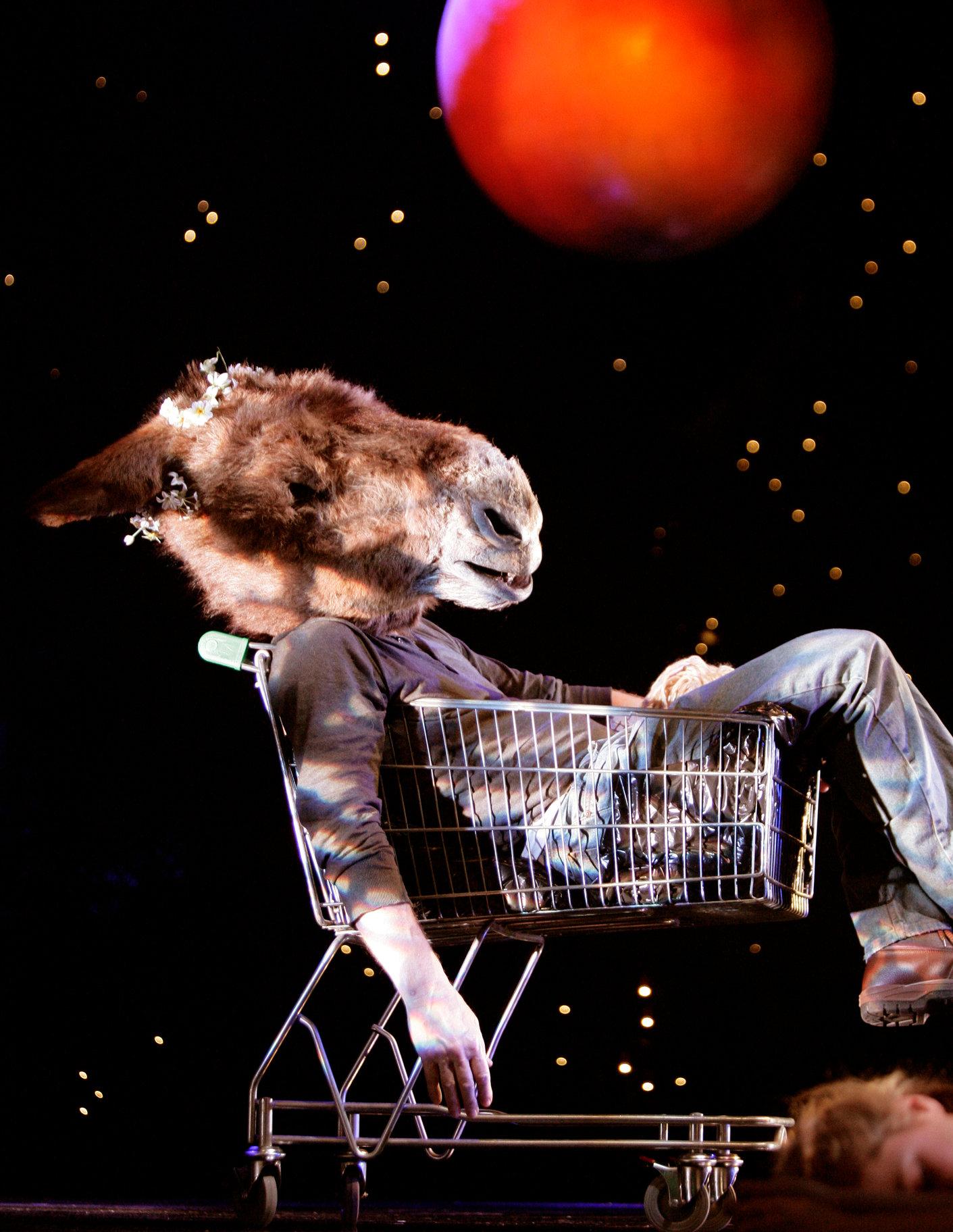 A Midsummer Night_s Dream_ 2005_ Bottom transformed into an ass_2005_Photo by Stewart Hemley _c_ RSC_46953