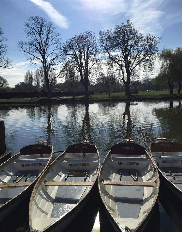 Line of rowing boats parked on the River Avon