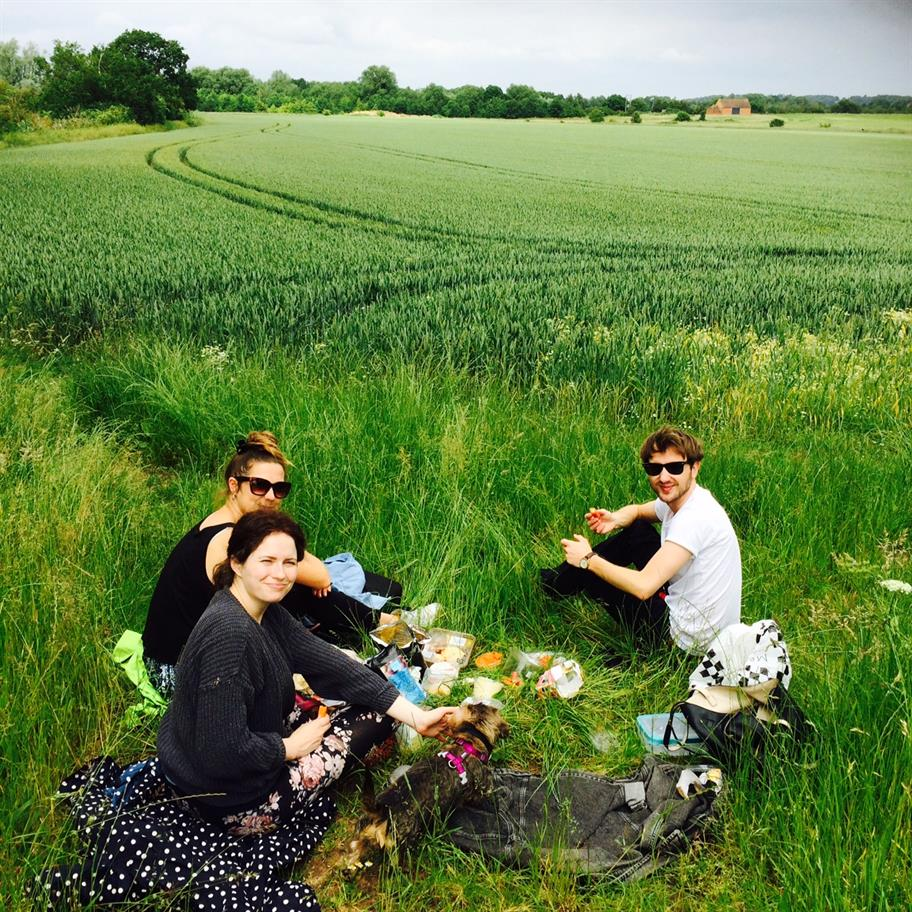 Three people and a dog having a picnic in a green field