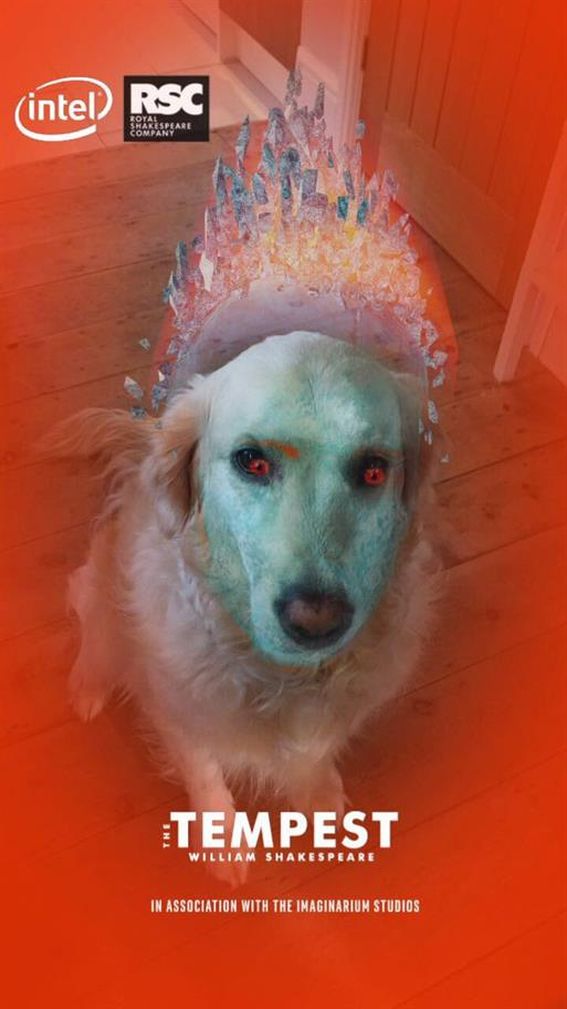 Snapchat Tempest Filter on a dog