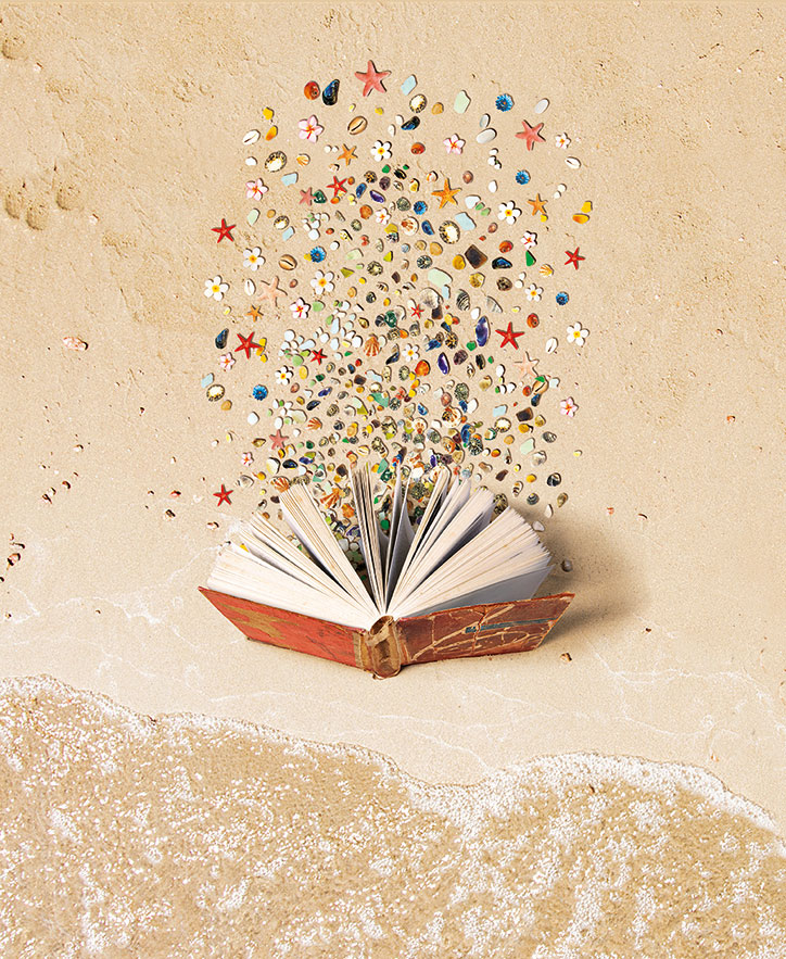 drawing of an old open book standing on sand with coloured shells coming out of its pages