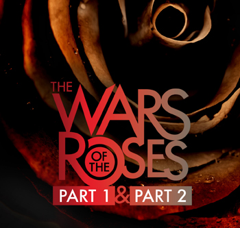 Wars of the Roses Part 1 & Part 2 close up of rose