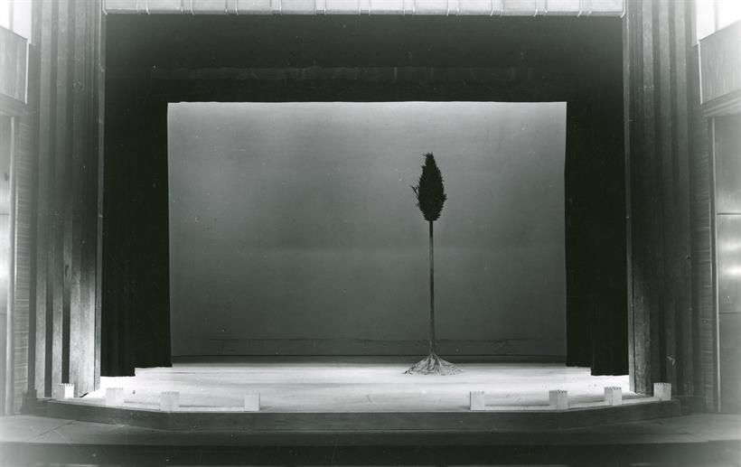 Theatrical set for Romeo and Juliet showing a single cypress tree