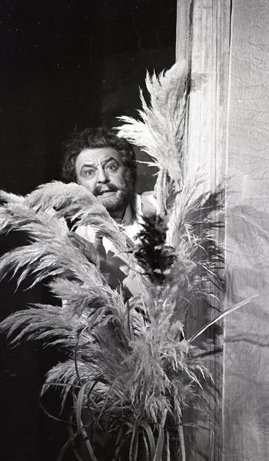 Donald Sinden as Benedick eavesdrops behind a pot plant