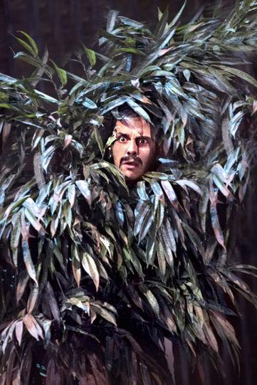Benedick in a bush
