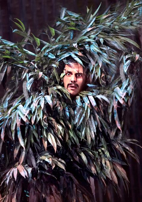 Benedick peers out from a thick bush