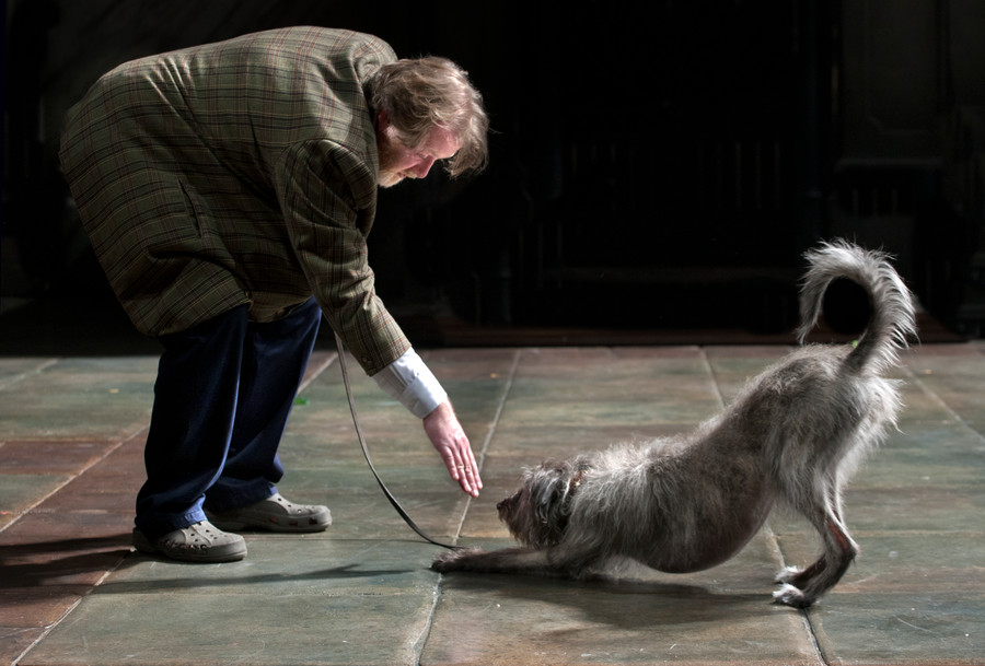 Roger Morlidge extending his hand towards Mossup the grey dog